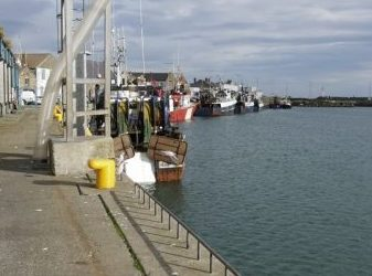 Martin snubs Irish Fishing Industry with no Junior Minister Appointment