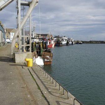 Martin Irish Fishing Industry