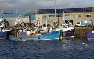 £25.2 million worths of fish was landed in NI fishing ports