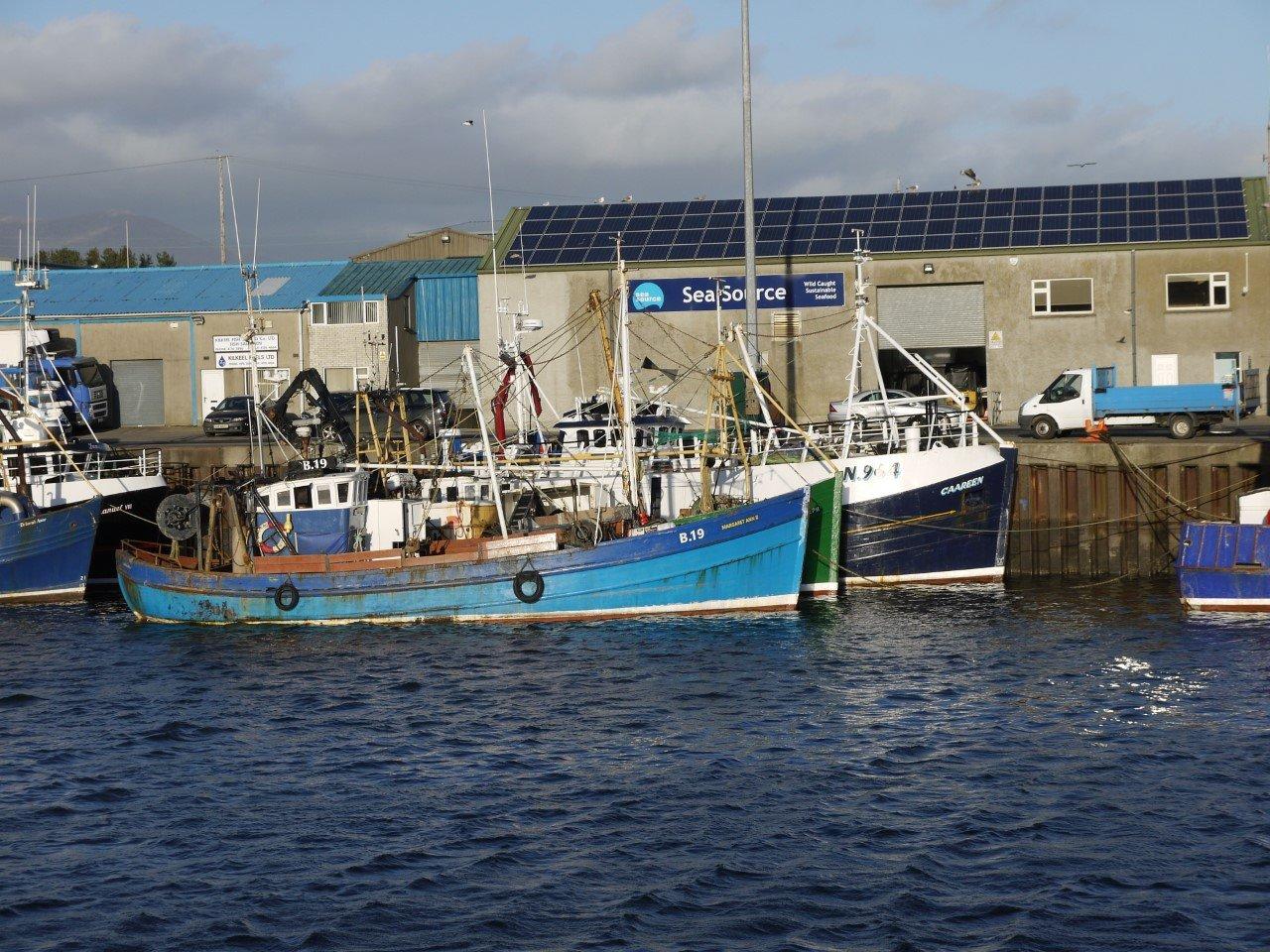 northern irish fishing industry