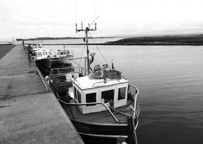 irish inshore fisheries sector