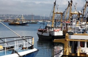 Brixham harbour, devon