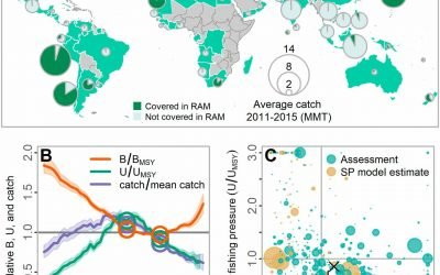 New Paper Shows Intensively Managed Fisheries are Recovering