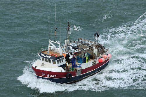 Future of Our Inshore Fisheries
