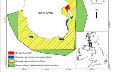 Isle of Arran NTZ project breathes new life into marine environment