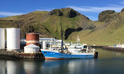 EUfishmeal Managing Director calls for urgent action in North-East Atlantic