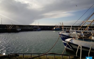 Commissioner announces further support for EU Fisheries Sector
