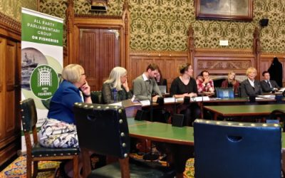 APPG Event Explores Socioeconomic Solutions for UK Fishing Communities