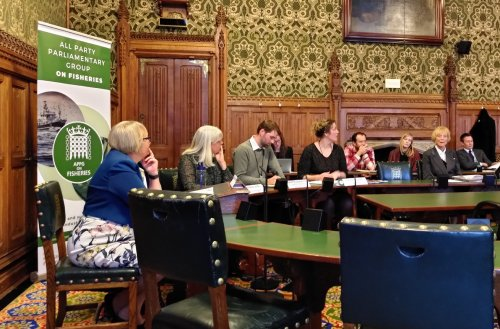 The APPG event in Westminster