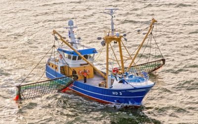 O.F Fishing Ltd of Kilmore Quay welcomes new trawler 'Tilly'