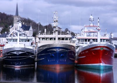 Killybegs Fishermen's Organisation Brexit
