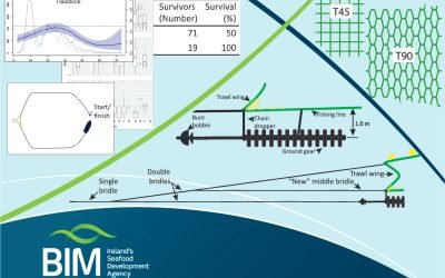 Trawl through BIM guide on solutions to reduce unwanted catches