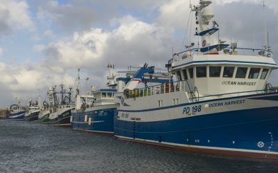 SFF – Fishing Industry will keep up pressure over key Brexit goals