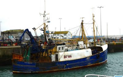 DAERA Minister Poots agrees to Paper for NI Fishing Industry Support