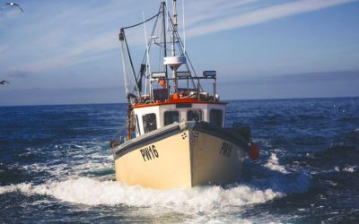 Applications open for From the Sea to the Door grant scheme