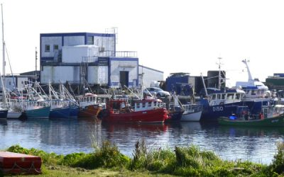 NIFF, NIFA & NIFO make joint submission for Inshore Sector Support