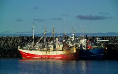 Electronic catch logging for Iceland fishing vessels from 2021