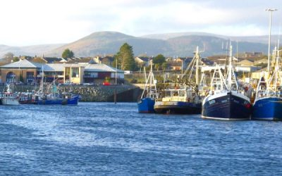 NI fish producers welcome generous support package for fishing industry