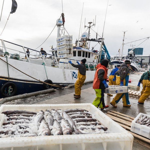 oceana fisheries bill overfishing
