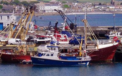 MMO Announces Fisheries Response Fund Appeals Process