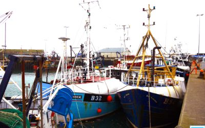 DAERA Minister announces £1.5m support package for fishing industry