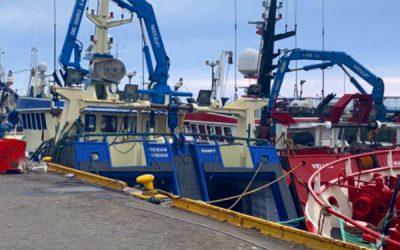 Whitefish Landings continue at Scottish ports despite Continental markets