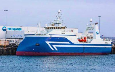 Haddock Bycatch everywhere says Icelandic skipper