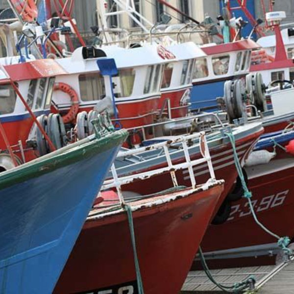 illegal fishing cross-border security