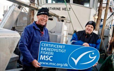 Danish fishermen are taking initiative with new fishing app