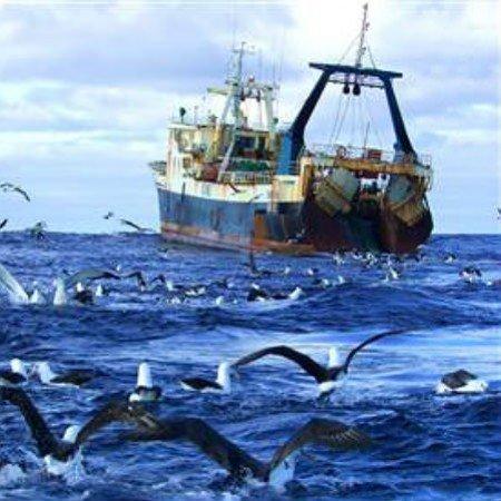 EU International Ocean Governance