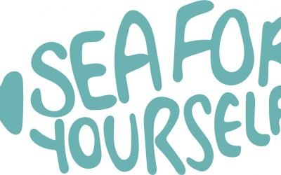 Seafood businesses invited to get involved in Sea For Yourself campaign
