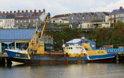 Report into fatal accident at Milford Docks, Wales released by FBIMA