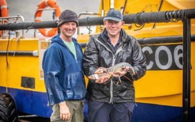 Branded Claw Band makes Welsh Lobsters Stand Out in the Home Crowd
