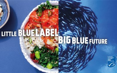 Little Blue Label Big Blue Future | MSC – World Oceans Day 2020