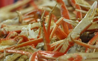 Norwegian Fisheries Minister extends the Snow Crab Season