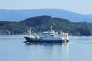Norwegian Pelagic Boats take part in Mackerel Research Programme