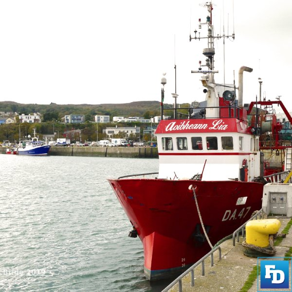 Irish Fishing Industry Channanges