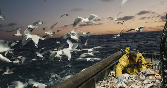 uk fishing fatality rate