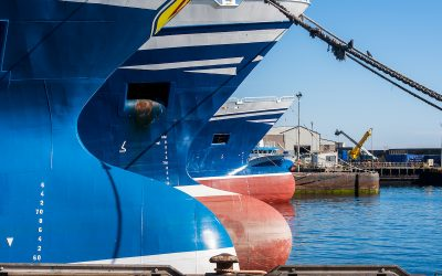Seafood sector aiming for global market says Seafood Scotland