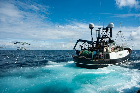 UK fishing 2019 economic estimates