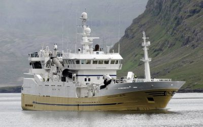 Icelandic Mackerel Season continues with mixed results for fleet