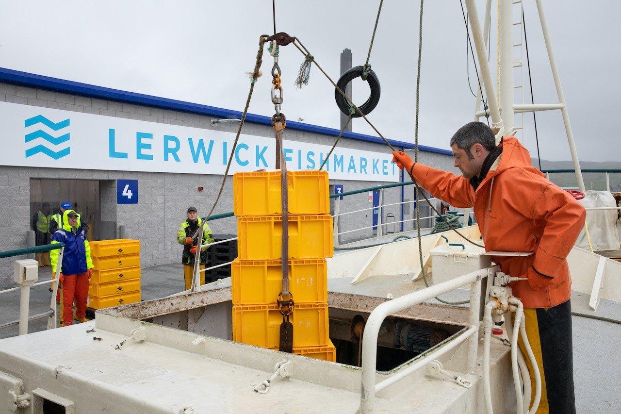 new Lerwick whitefish market