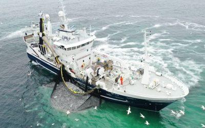 Pelagisk Forening warning not to turn Norwegian fishers into Criminals