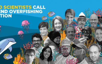 End Overfishing: 300 Scientists Urge EU To Protect Ocean Health