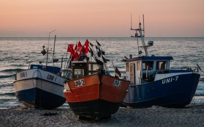Commission adopts report on multiannual plan for Baltic Sea