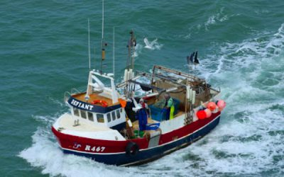 MMO Helping the UK Fishing Industry Transition to Independence