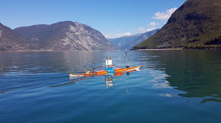 Using a kayak drone the Norwegian Institue of Research found more sprat than the traditional method of employing an echo sounder on a boat