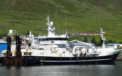Icelandic Herring Boats Experiencing Boom at Start of Season