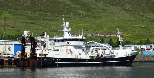 Icelandic herring boats experiencing a boom since the start of season with the Síldvarvinnslan plant at Neskaupstaður working round the clock