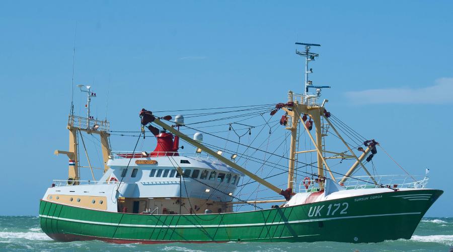 dutch fishing north sea consultation